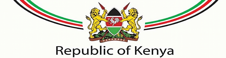 Image result for kenya government